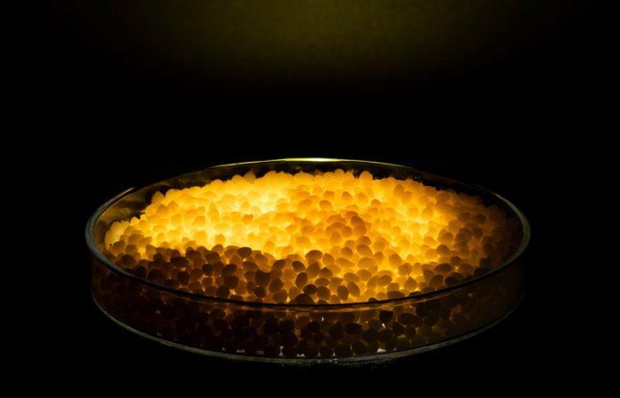 Orange-antimicrobial-plastic-granules-on-a-petri-dish